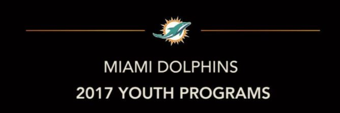MIAMI DOLPHINS FOUNDATION: COUNTYWIDE CONCUSSION CARE PARTNERSHIP
